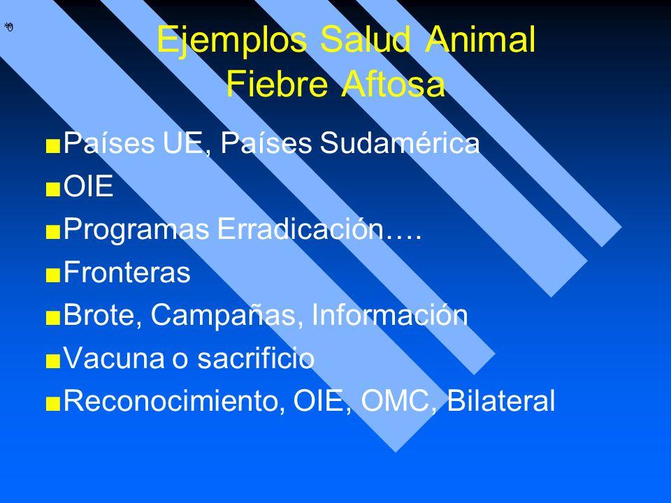 Ejemplos Salud Animal Fiebre Aftosa