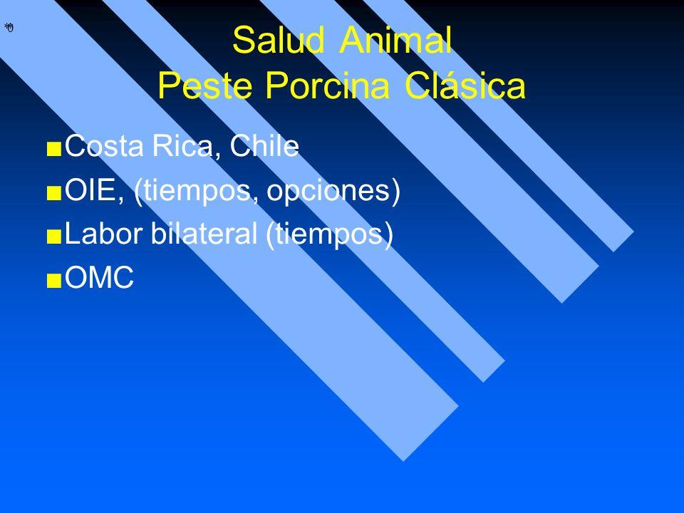 Salud Animal Peste Porcina Clásica