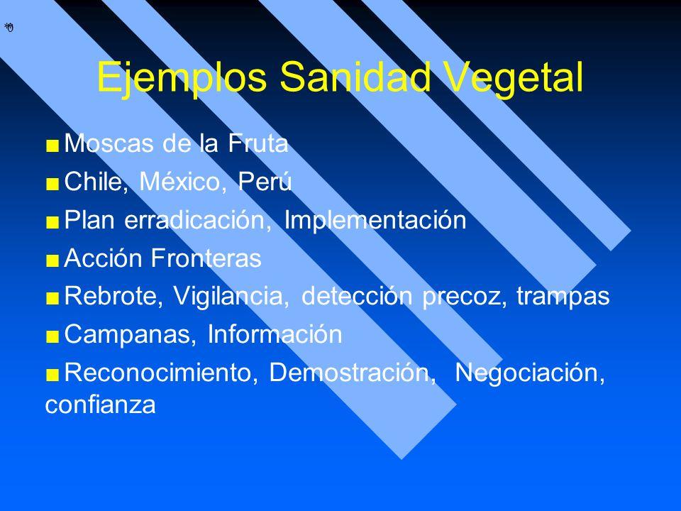 Ejemplos Sanidad Vegetal