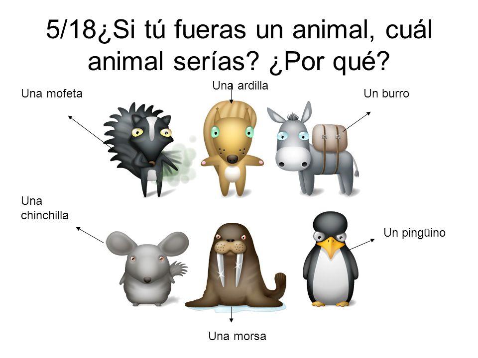 5/18¿Si tú fueras un animal, cuál animal serías ¿Por qué