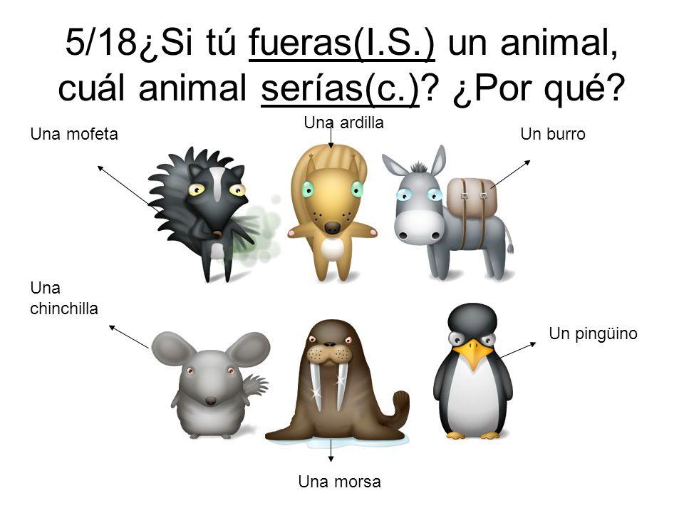5/18¿Si tú fueras(I.S.) un animal, cuál animal serías(c.) ¿Por qué