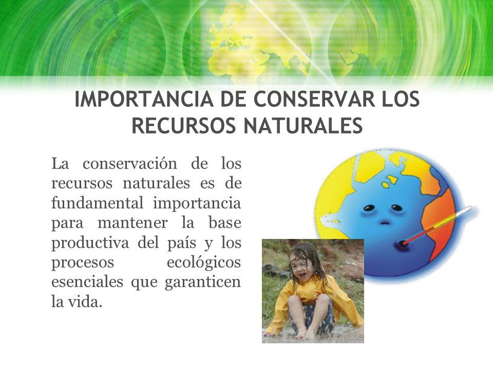 Los recursos naturales ppt video online descargar for Importancia de los viveros forestales