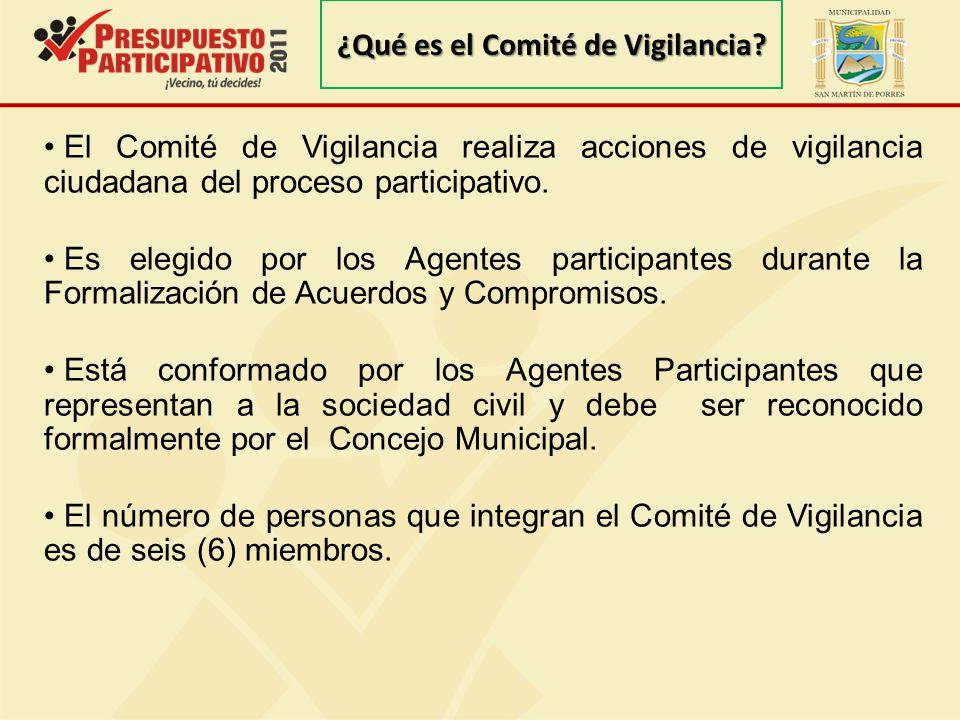 ¿Qué es el Comité de Vigilancia