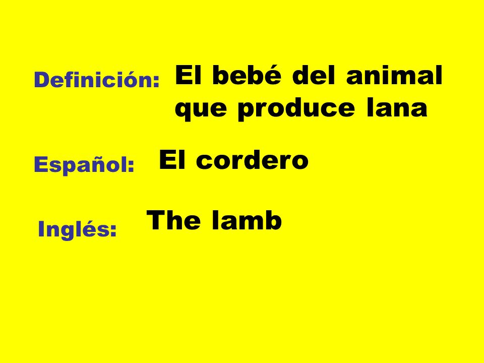El bebé del animal que produce lana