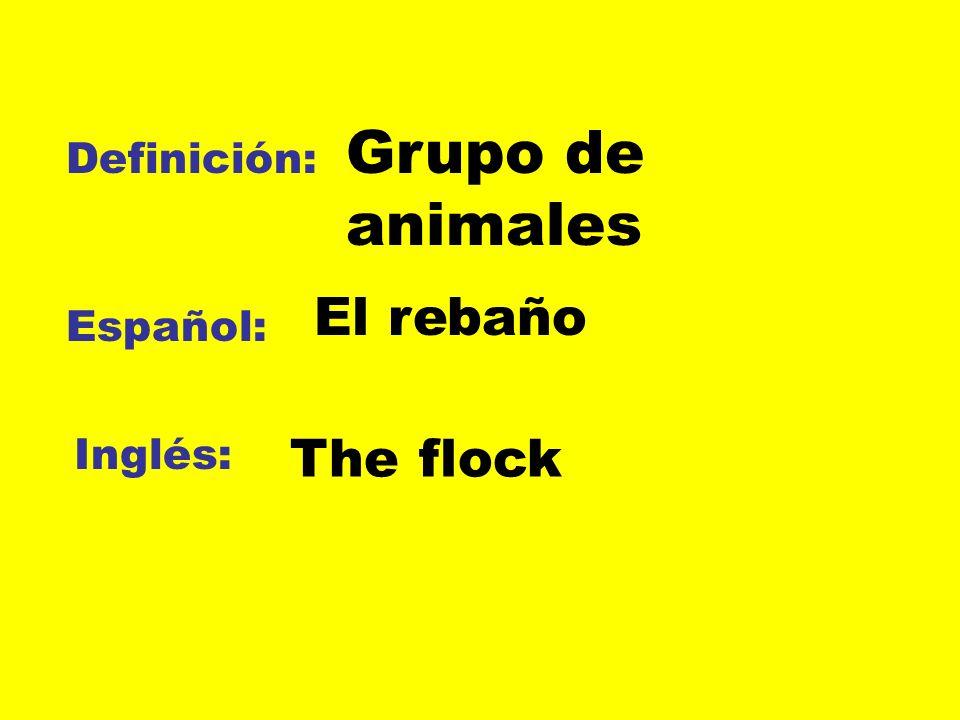 Grupo de animales Definición: El rebaño Español: Inglés: The flock