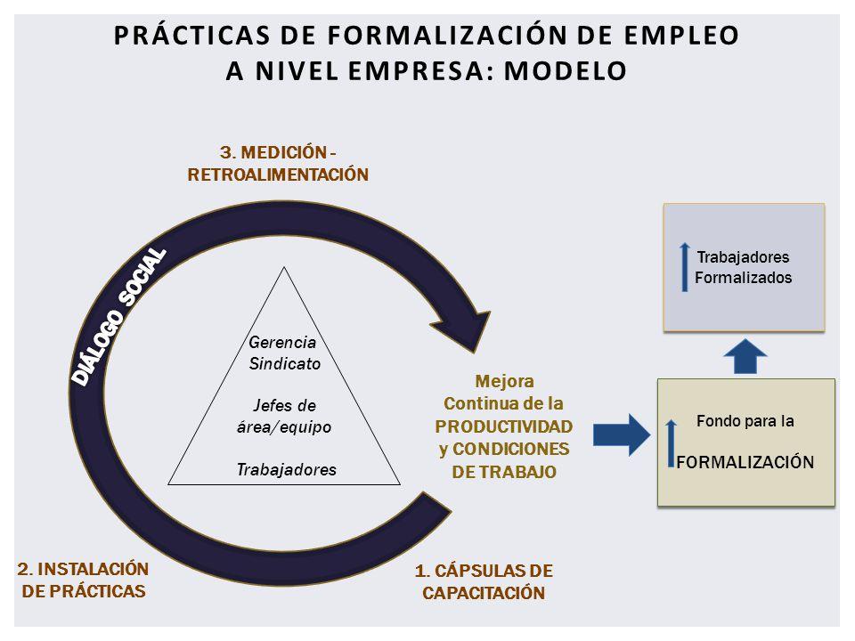 Prácticas de formalización de empleo a nivel empresa: modelo