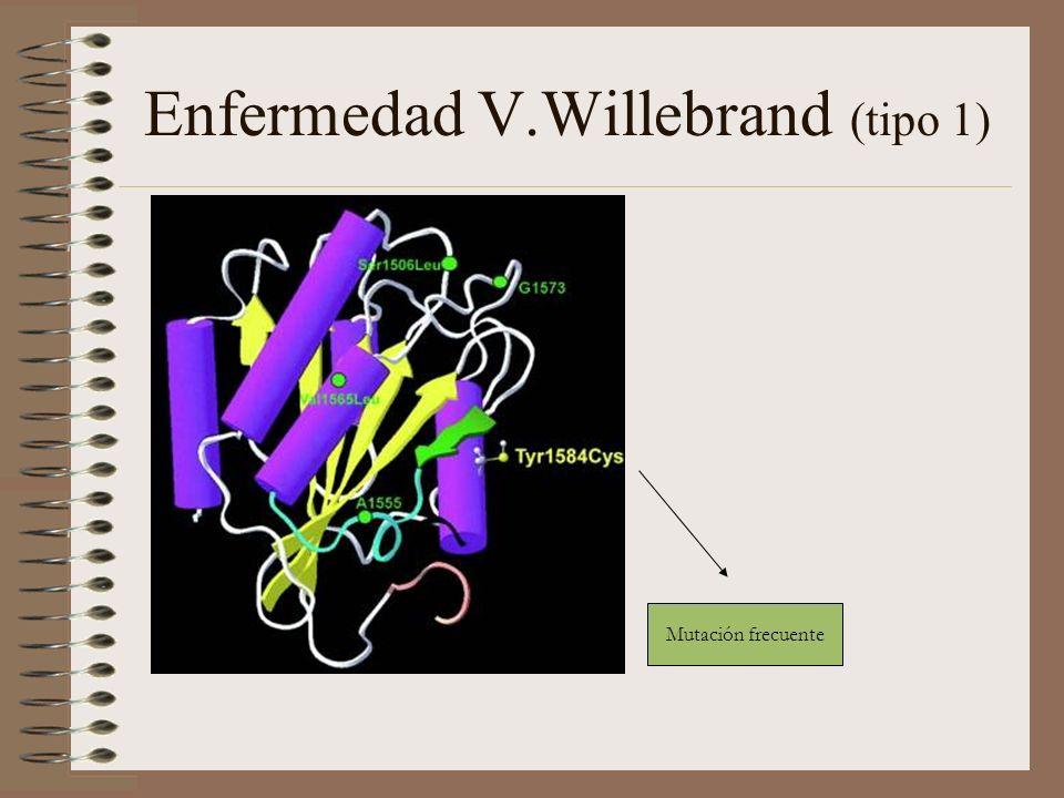 Enfermedad V.Willebrand (tipo 1)
