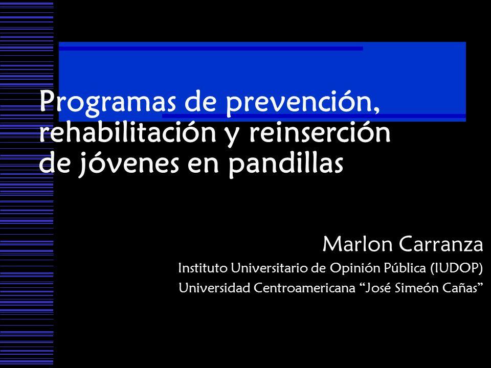 Programas de prevención, rehabilitación y reinserción de jóvenes en pandillas