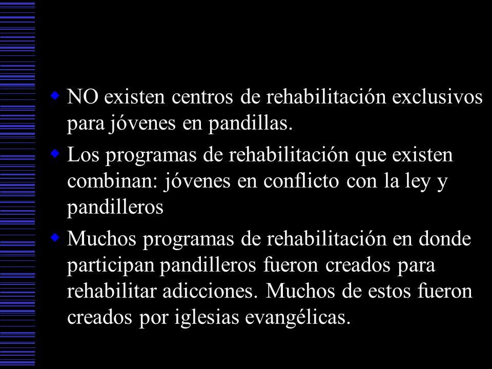 NO existen centros de rehabilitación exclusivos para jóvenes en pandillas.