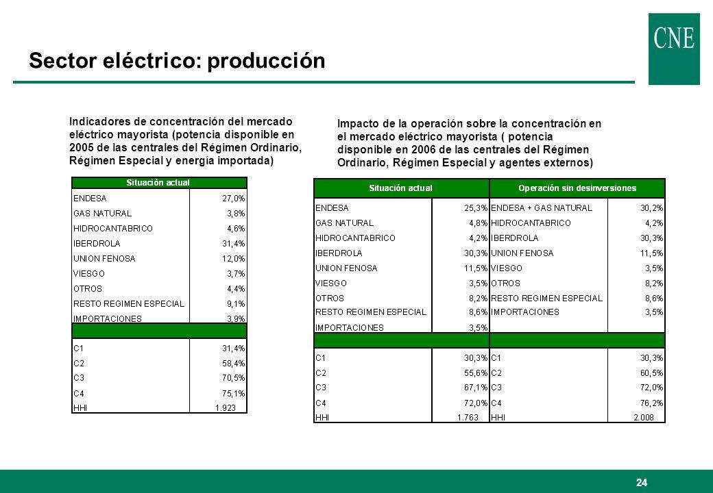 Sector eléctrico: producción