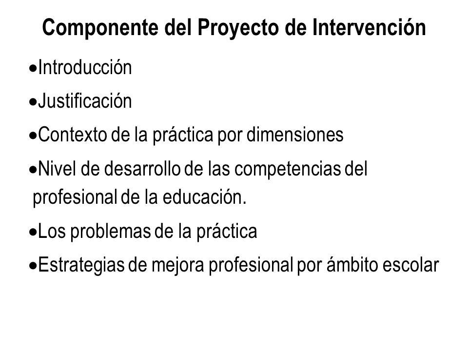 Componente del Proyecto de Intervención