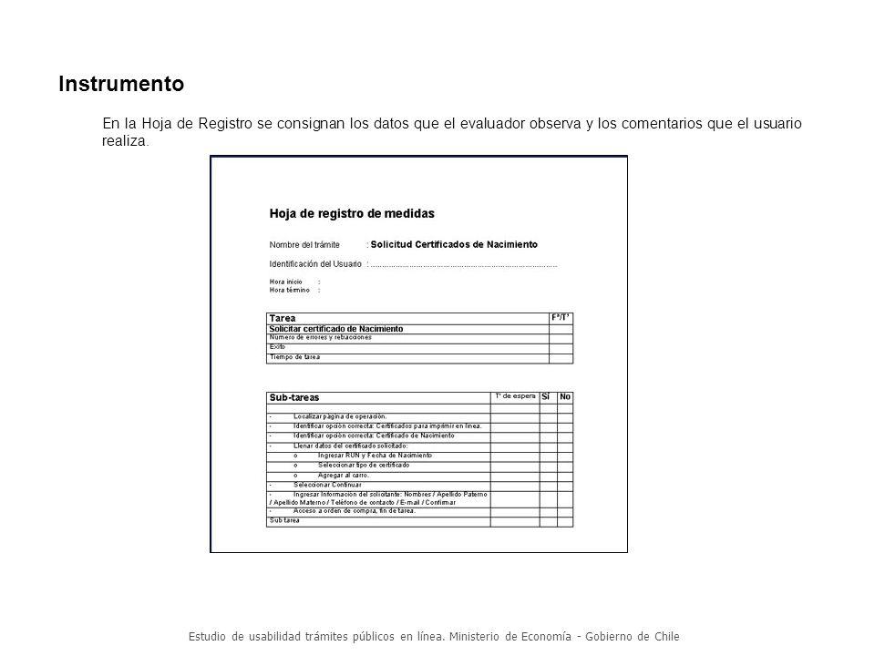 Instrumento En la Hoja de Registro se consignan los datos que el evaluador observa y los comentarios que el usuario realiza.