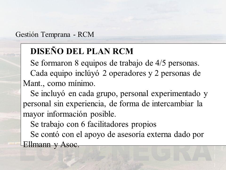 DISEÑO DEL PLAN RCM Se formaron 8 equipos de trabajo de 4/5 personas.