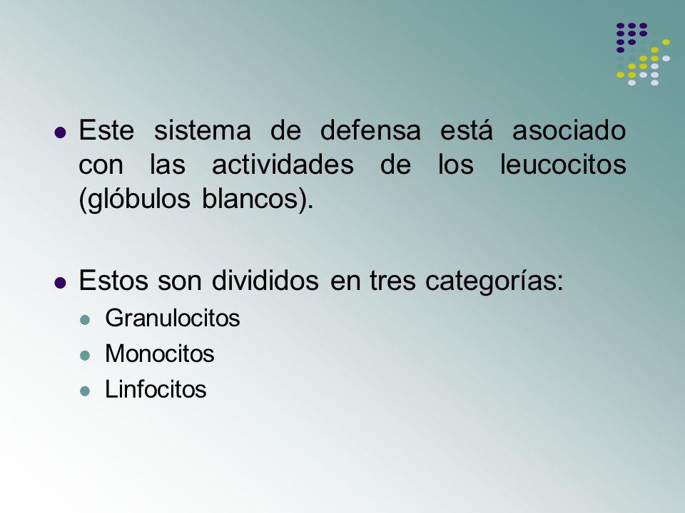 Sistema inmune conceptos generales ppt descargar for Banos divididos en tres