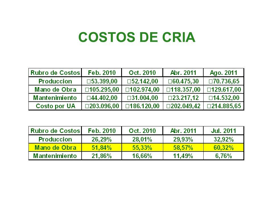 COSTOS DE CRIA