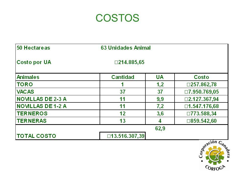 COSTOS 50 Hectareas 63 Unidades Animal Costo por UA ₡217.447,33
