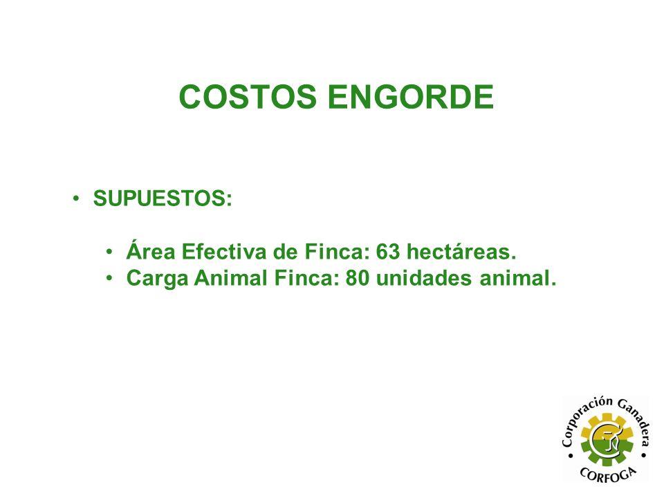 COSTOS ENGORDE SUPUESTOS: Área Efectiva de Finca: 63 hectáreas.