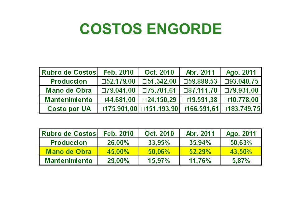 COSTOS ENGORDE