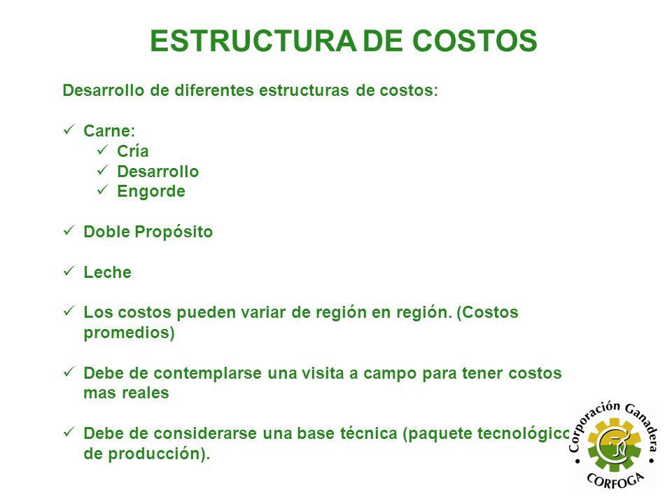 ESTRUCTURA DE COSTOS Desarrollo de diferentes estructuras de costos: