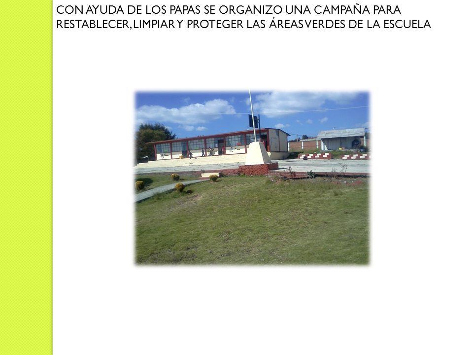 CON AYUDA DE LOS PAPAS SE ORGANIZO UNA CAMPAÑA PARA RESTABLECER, LIMPIAR Y PROTEGER LAS ÁREAS VERDES DE LA ESCUELA