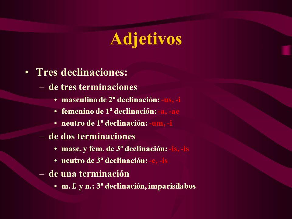 Adjetivos Tres declinaciones: de tres terminaciones
