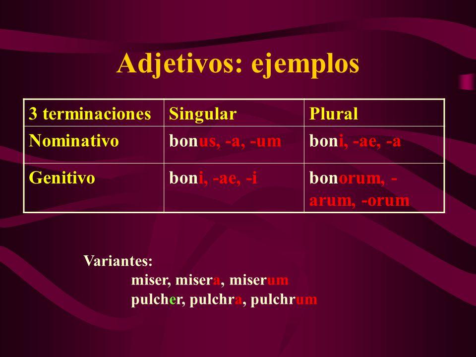 Adjetivos: ejemplos 3 terminaciones Singular Plural Nominativo