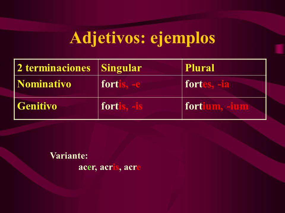 Adjetivos: ejemplos 2 terminaciones Singular Plural Nominativo