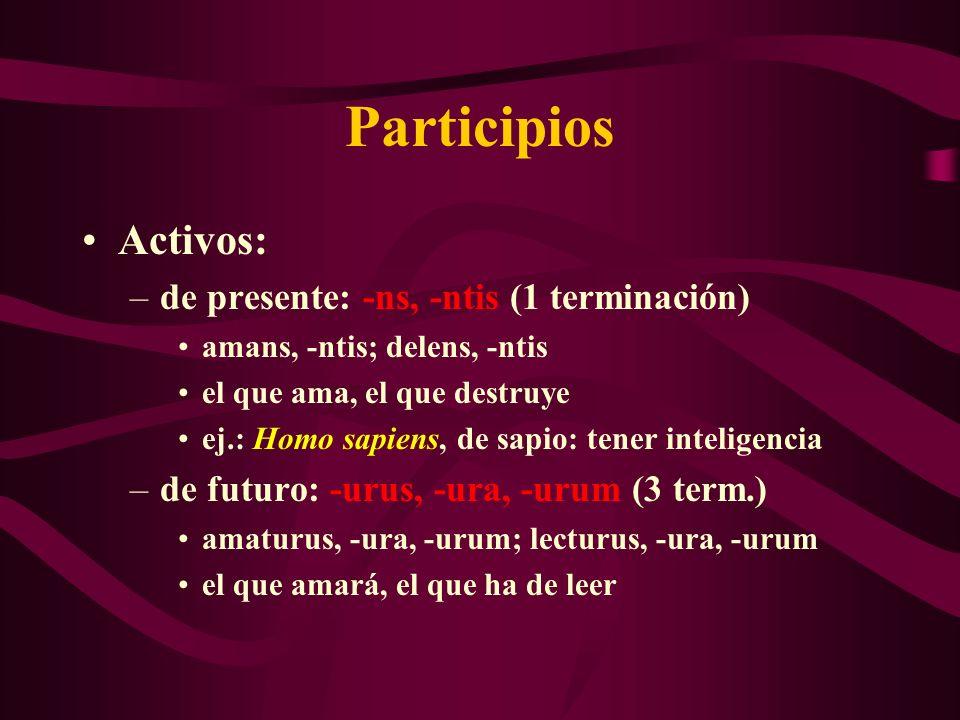Participios Activos: de presente: -ns, -ntis (1 terminación)