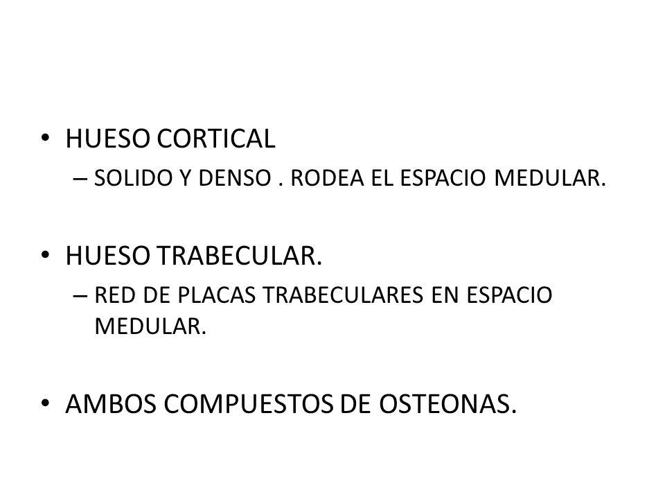AMBOS COMPUESTOS DE OSTEONAS.