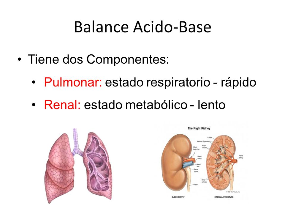 Balance Acido-Base Tiene dos Componentes: