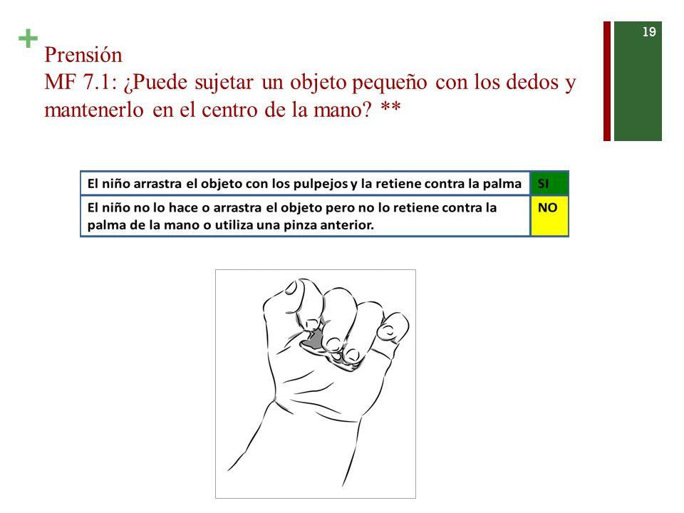 Prensión MF 7.1: ¿Puede sujetar un objeto pequeño con los dedos y mantenerlo en el centro de la mano.