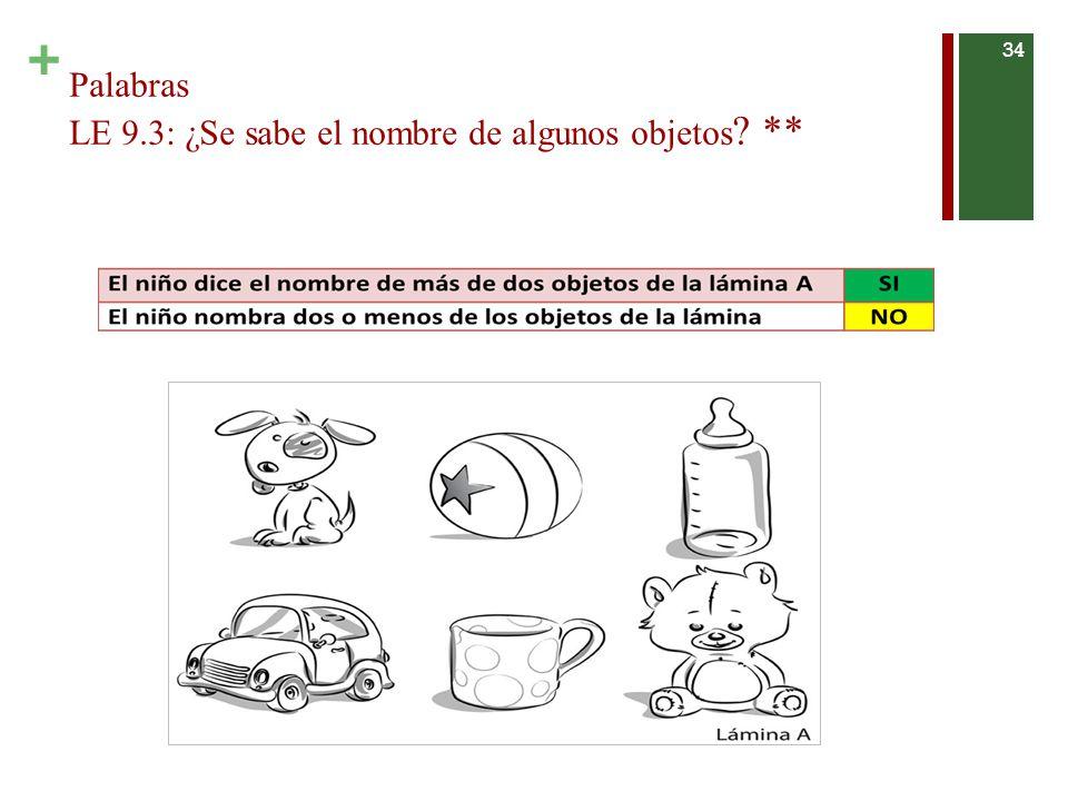 Palabras LE 9.3: ¿Se sabe el nombre de algunos objetos **