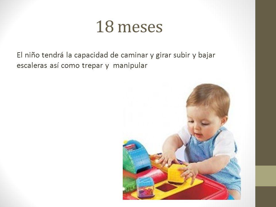 18 meses El niño tendrá la capacidad de caminar y girar subir y bajar escaleras así como trepar y manipular.