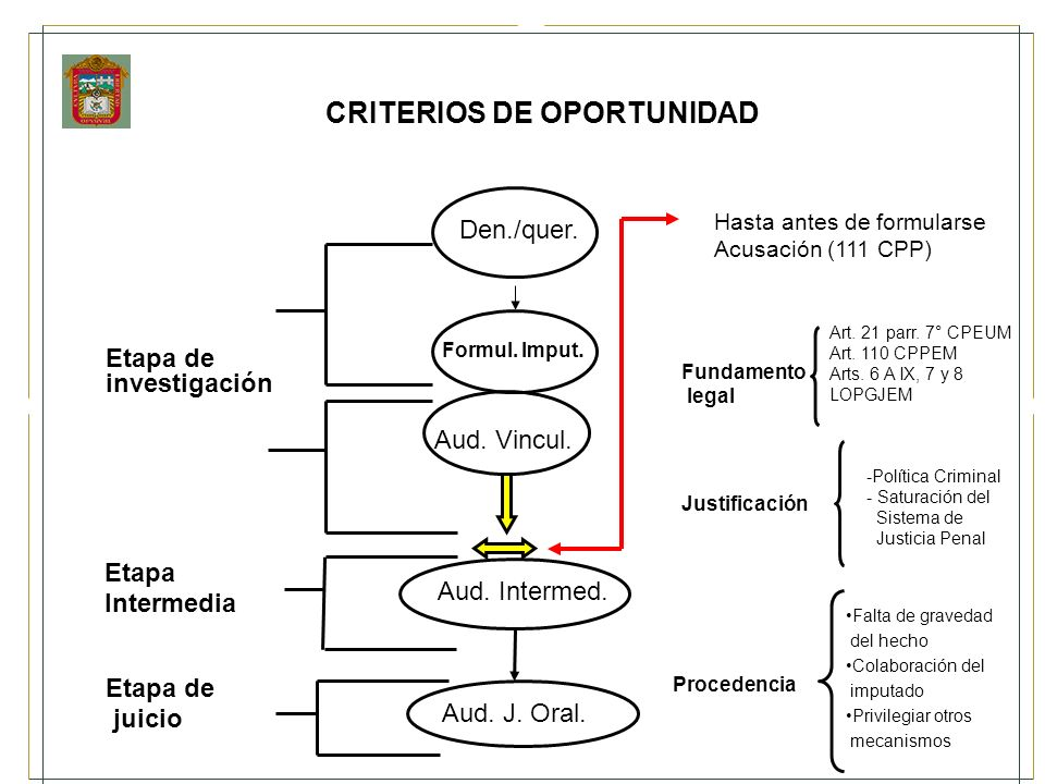 CRITERIOS DE OPORTUNIDAD