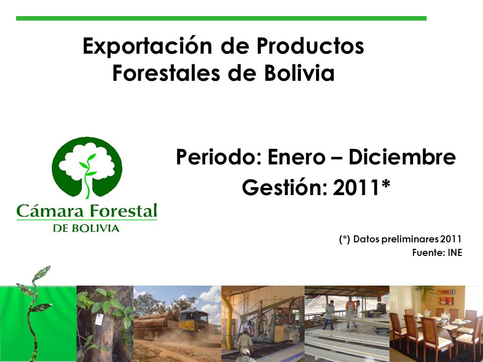 Exportación de Productos Forestales de Bolivia