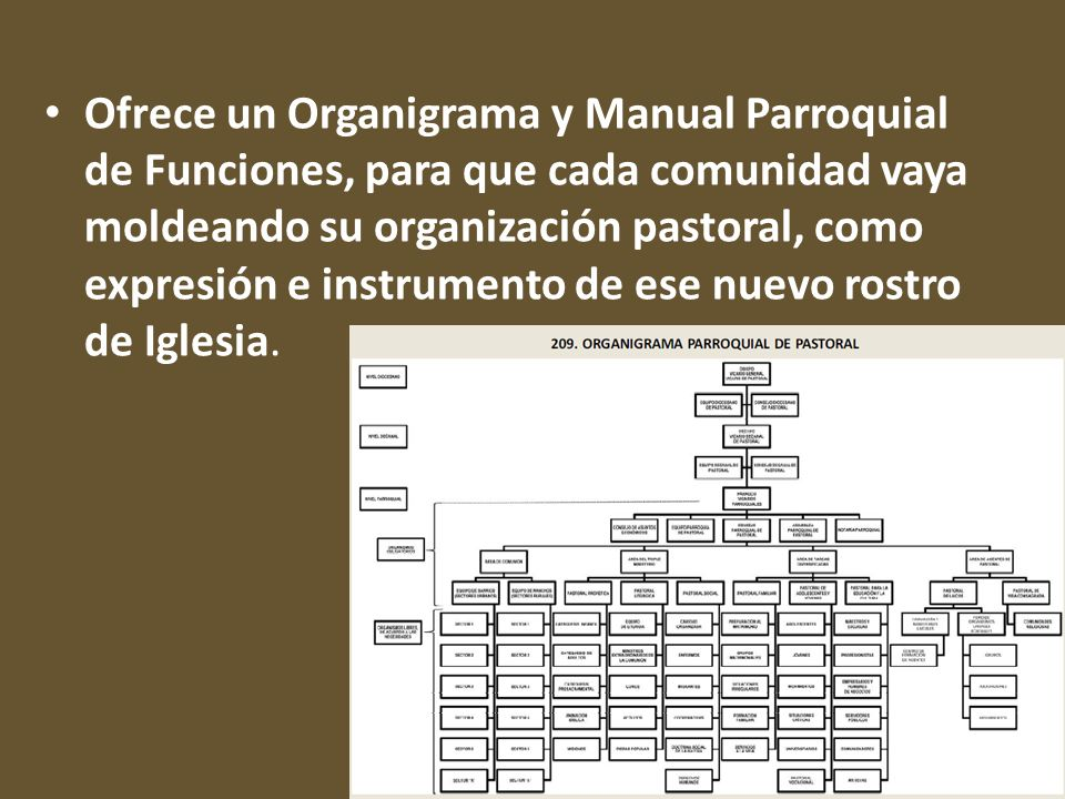 Ofrece un Organigrama y Manual Parroquial de Funciones, para que cada comunidad vaya moldeando su organización pastoral, como expresión e instrumento de ese nuevo rostro de Iglesia.