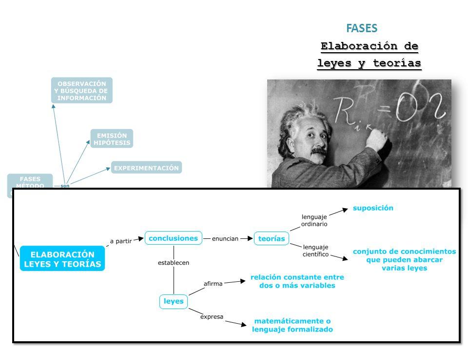 FASES Elaboración de leyes y teorías