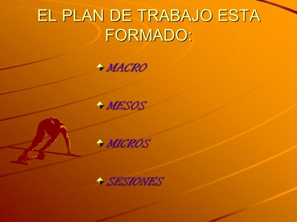 EL PLAN DE TRABAJO ESTA FORMADO:
