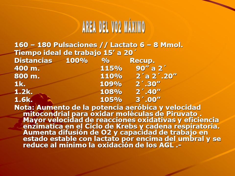 160 – 180 Pulsaciones // Lactato 6 – 8 Mmol.