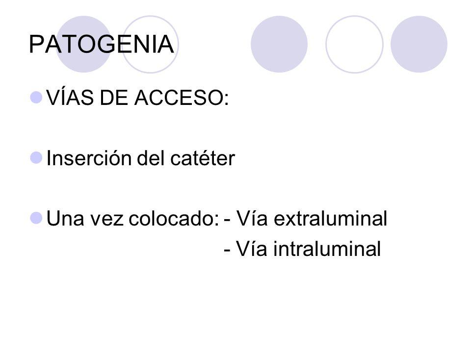 PATOGENIA VÍAS DE ACCESO: Inserción del catéter