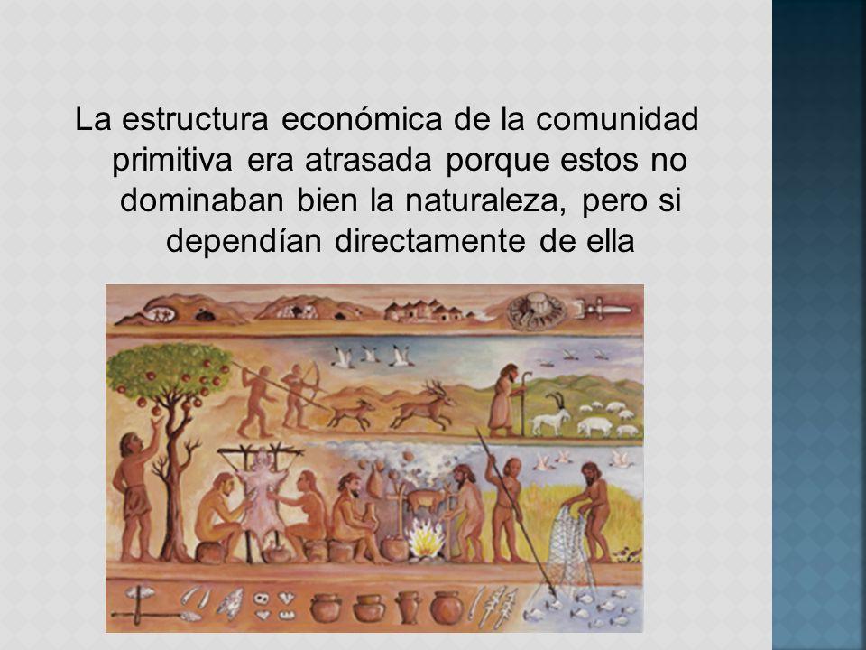 La estructura económica de la comunidad primitiva era atrasada porque estos no dominaban bien la naturaleza, pero si dependían directamente de ella