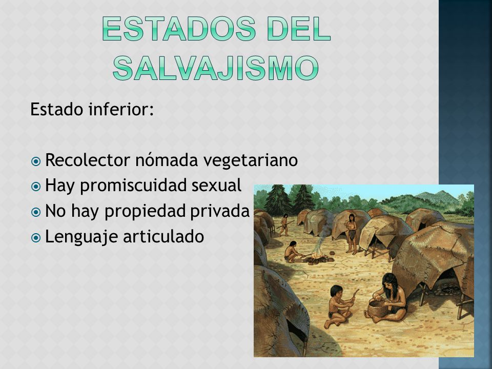 ESTADOS DEL SALVAJISMO