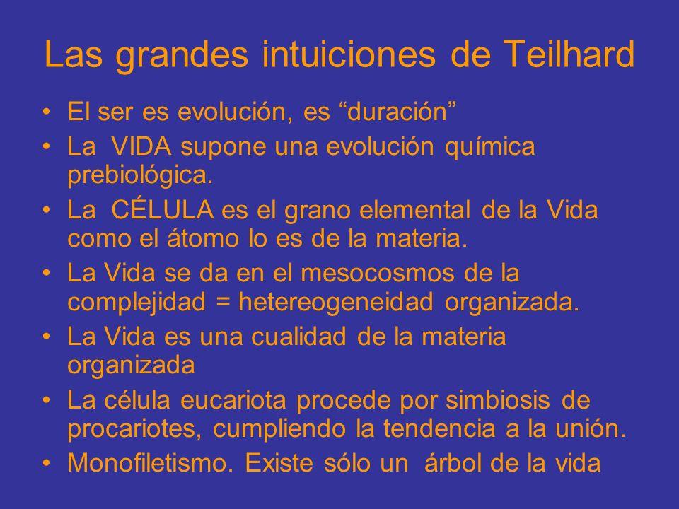 Las grandes intuiciones de Teilhard