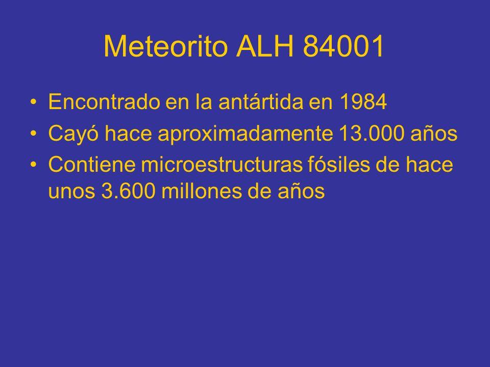 Meteorito ALH 84001 Encontrado en la antártida en 1984