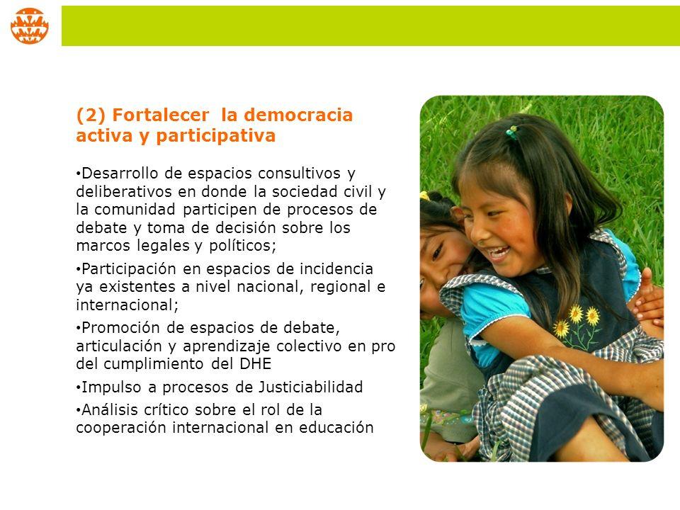 (2) Fortalecer la democracia activa y participativa