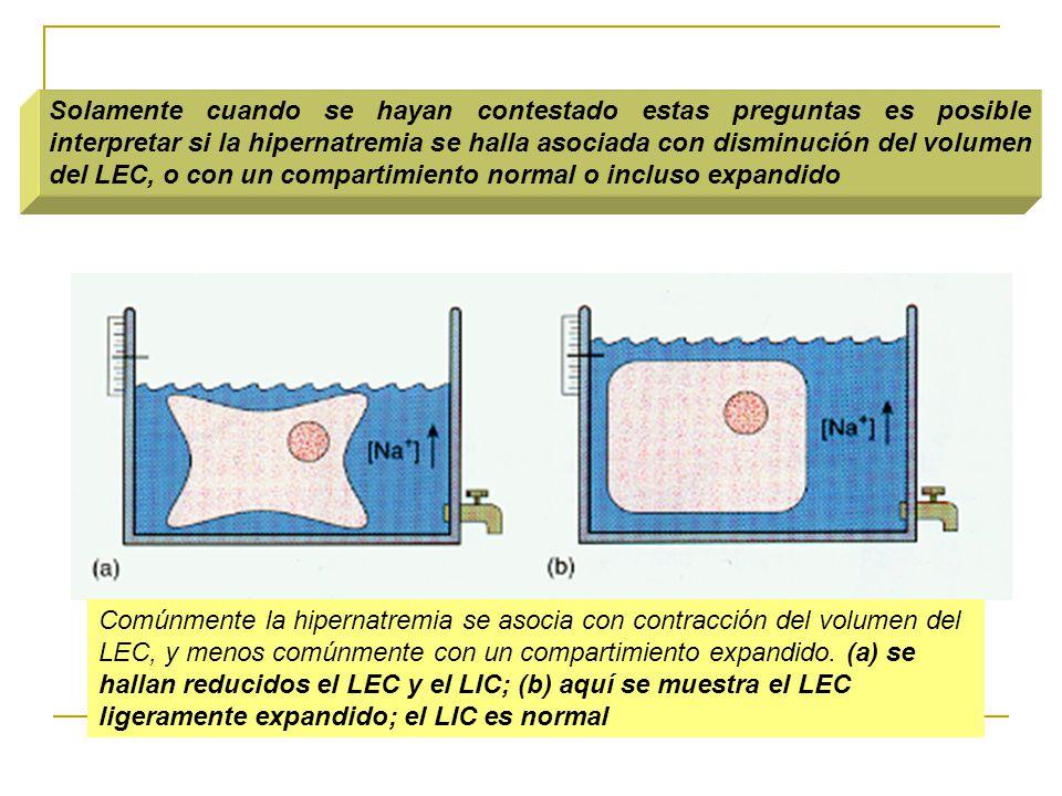 Solamente cuando se hayan contestado estas preguntas es posible interpretar si la hipernatremia se halla asociada con disminución del volumen del LEC, o con un compartimiento normal o incluso expandido