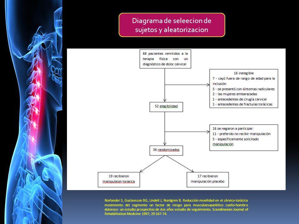 Famoso Diagrama De Cuello Y El Hombro Imagen - Anatomía de Las ...