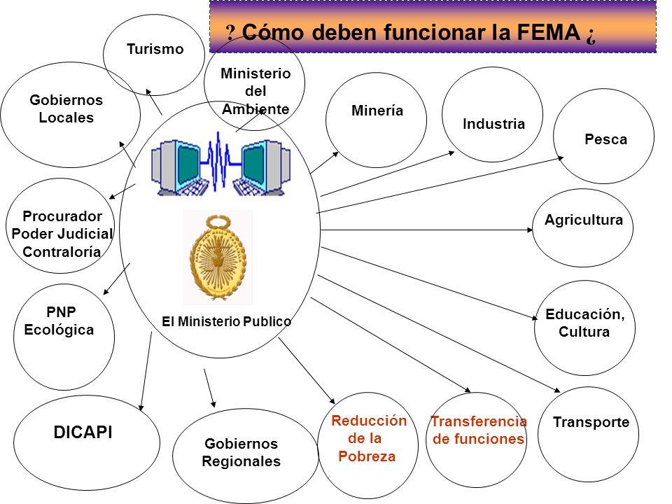 Cómo deben funcionar la FEMA ¿