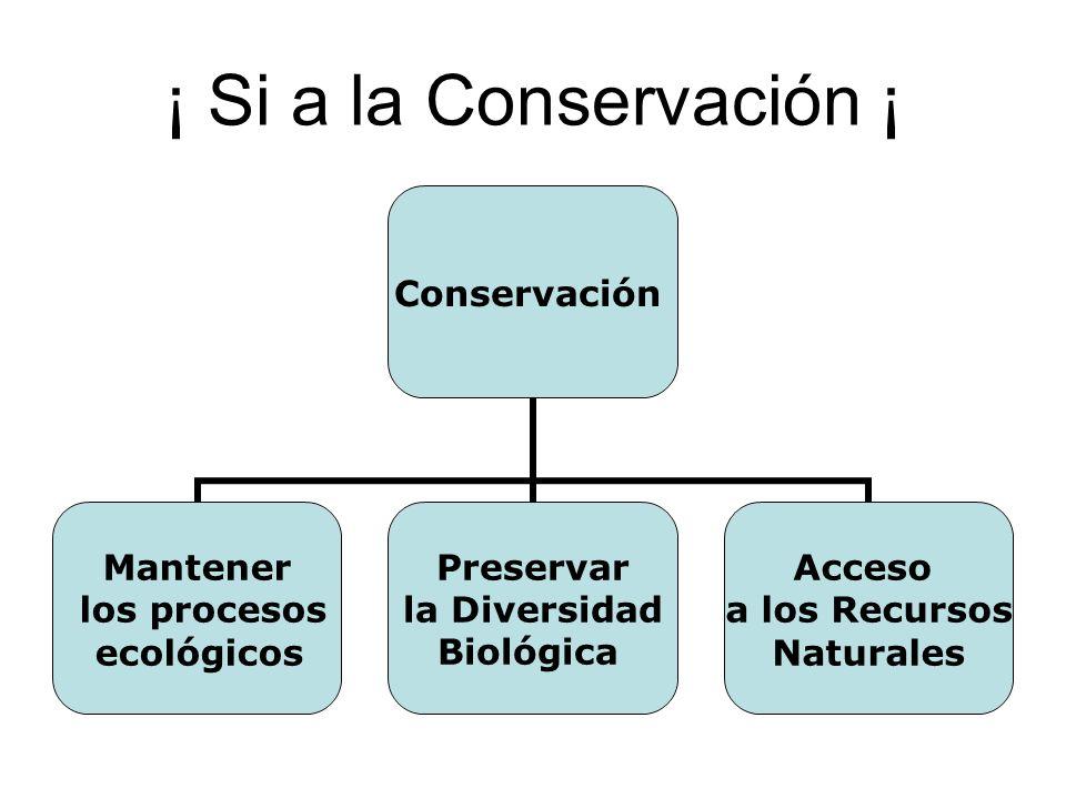 ¡ Si a la Conservación ¡