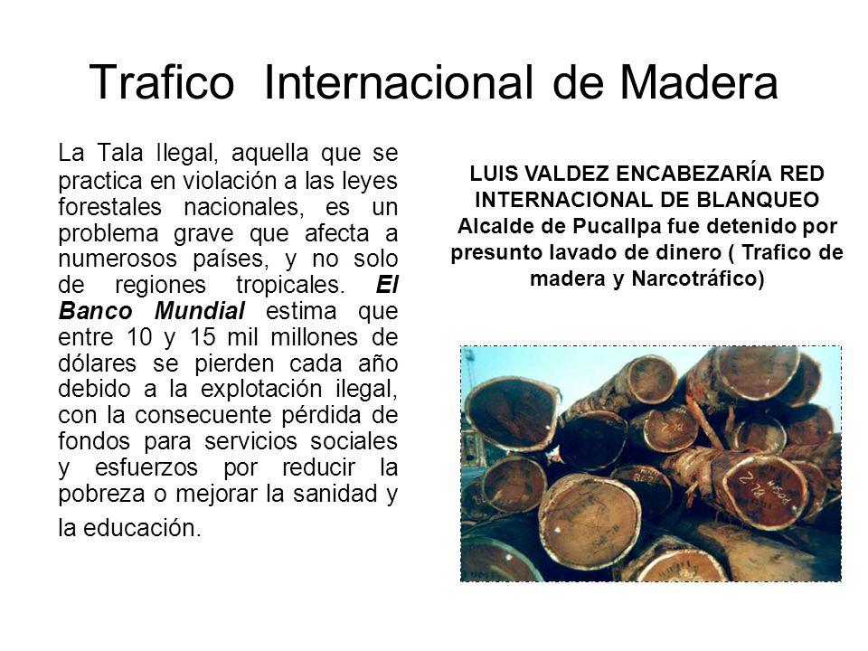 Trafico Internacional de Madera